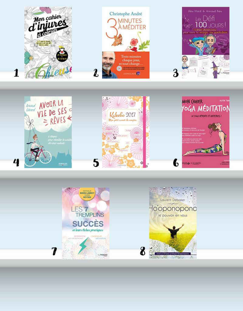 livres de développement personnel feel good 2017