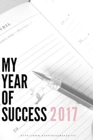 My Year Of Success 2017