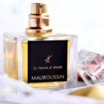 Le secret d'Arielle Mauboussin