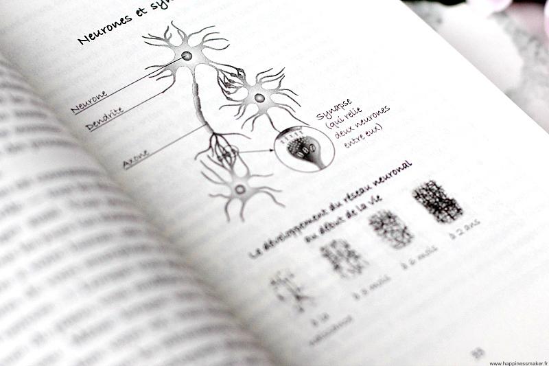 Neurones Power Brain