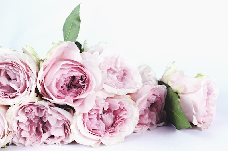 offrir des fleurs et en envoyer