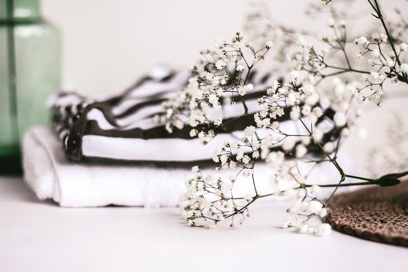 photos gratuites minimaliste fleurs blog instagram