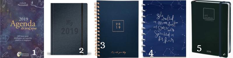 choisir son agenda planner bullet journal pour 2019
