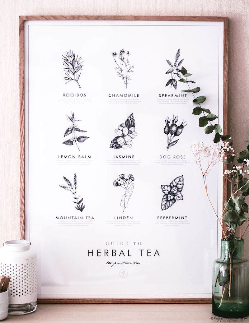 poster store affiche herbal tea