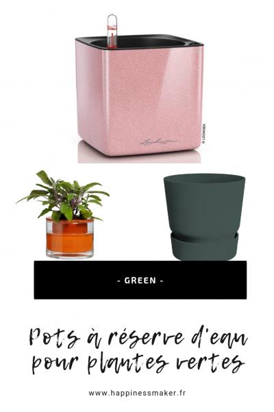pots a réserve d'eau pour plantes vertes