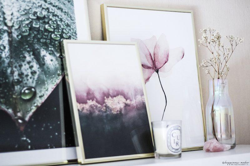 cadres plantes fleurs botanique