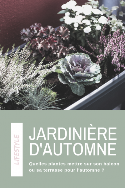 idées jardinière d'automne balcon terrasse
