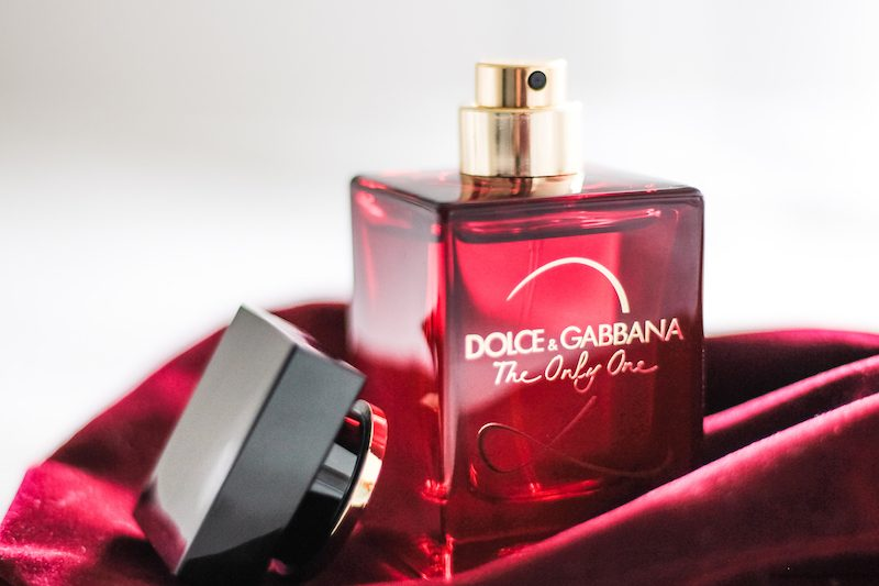 avis the only one 2 dolce gabbana