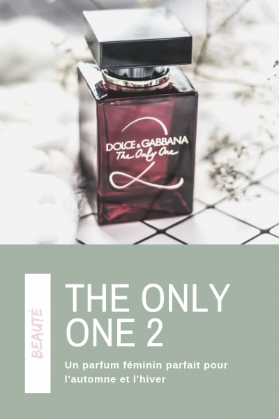 the only one 2 dolce gabbana parfum avis