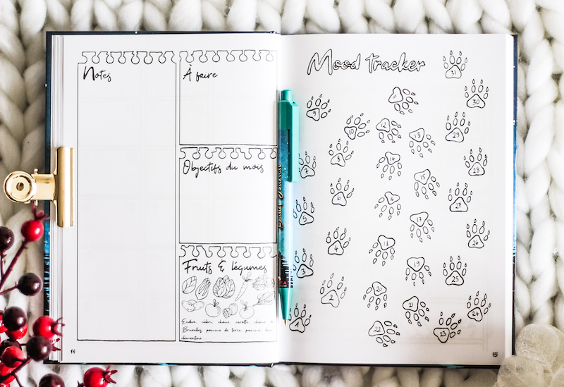 bullet journal planning mood tracker