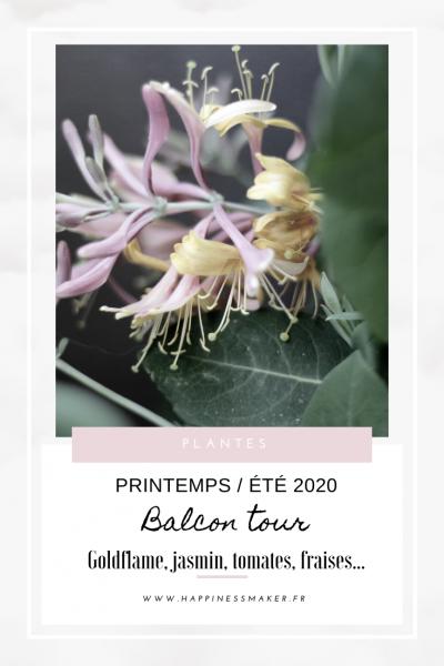 balcon tour potager urbain plantes fleuries