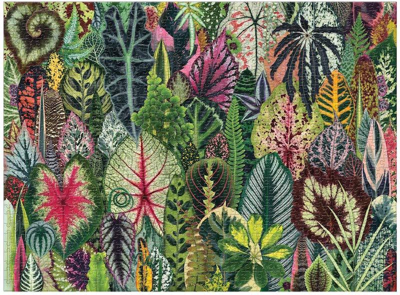 puzzle adultes plantes vertes caladium calathea