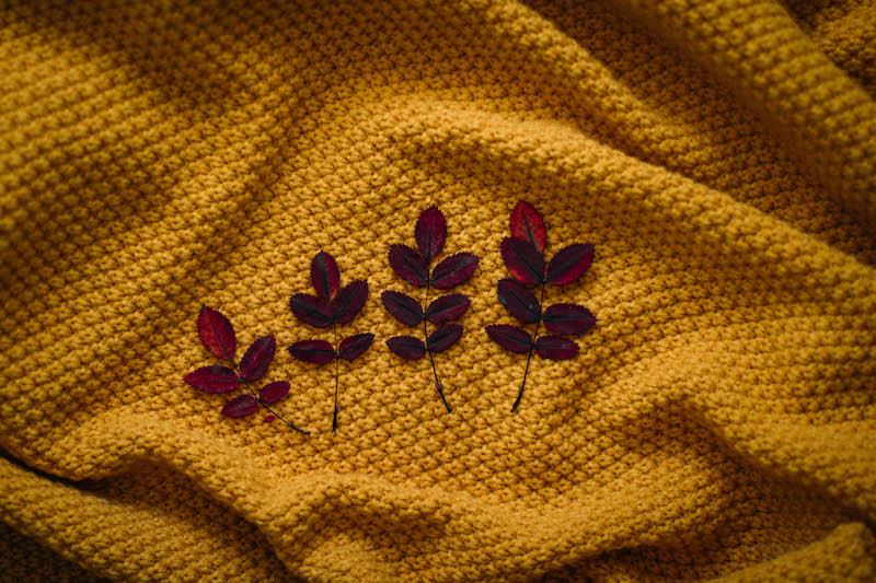 automne fashion