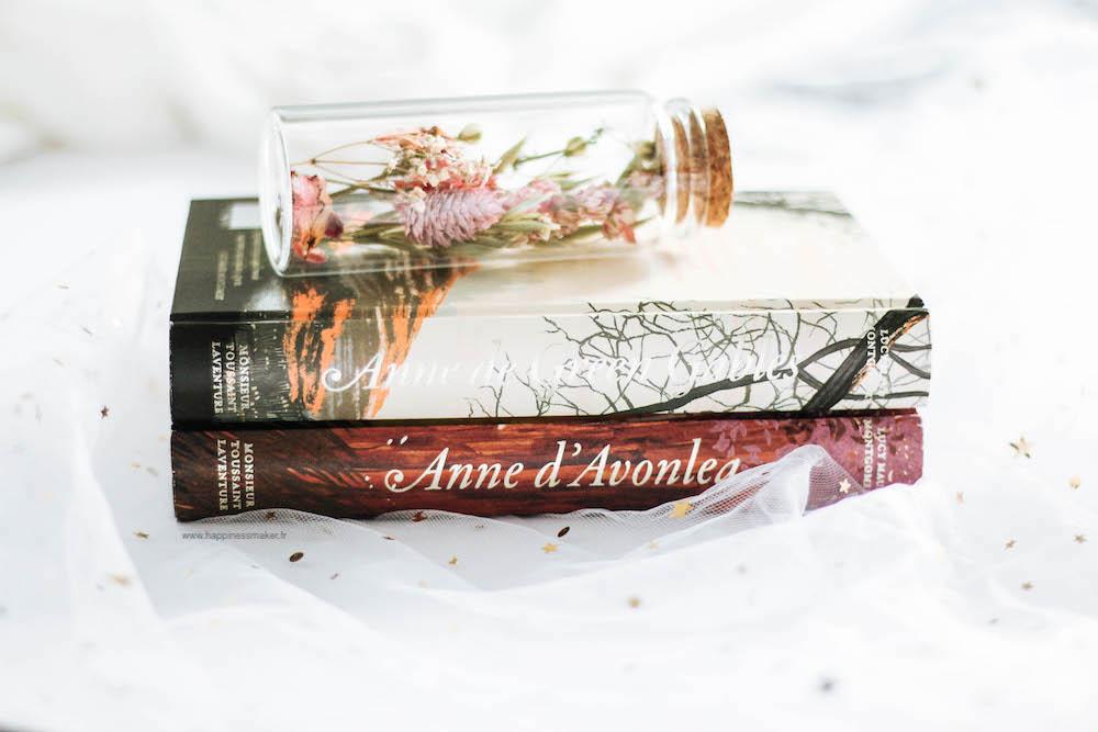 livres-français-anne-avec-un-e-saison-4-netflix